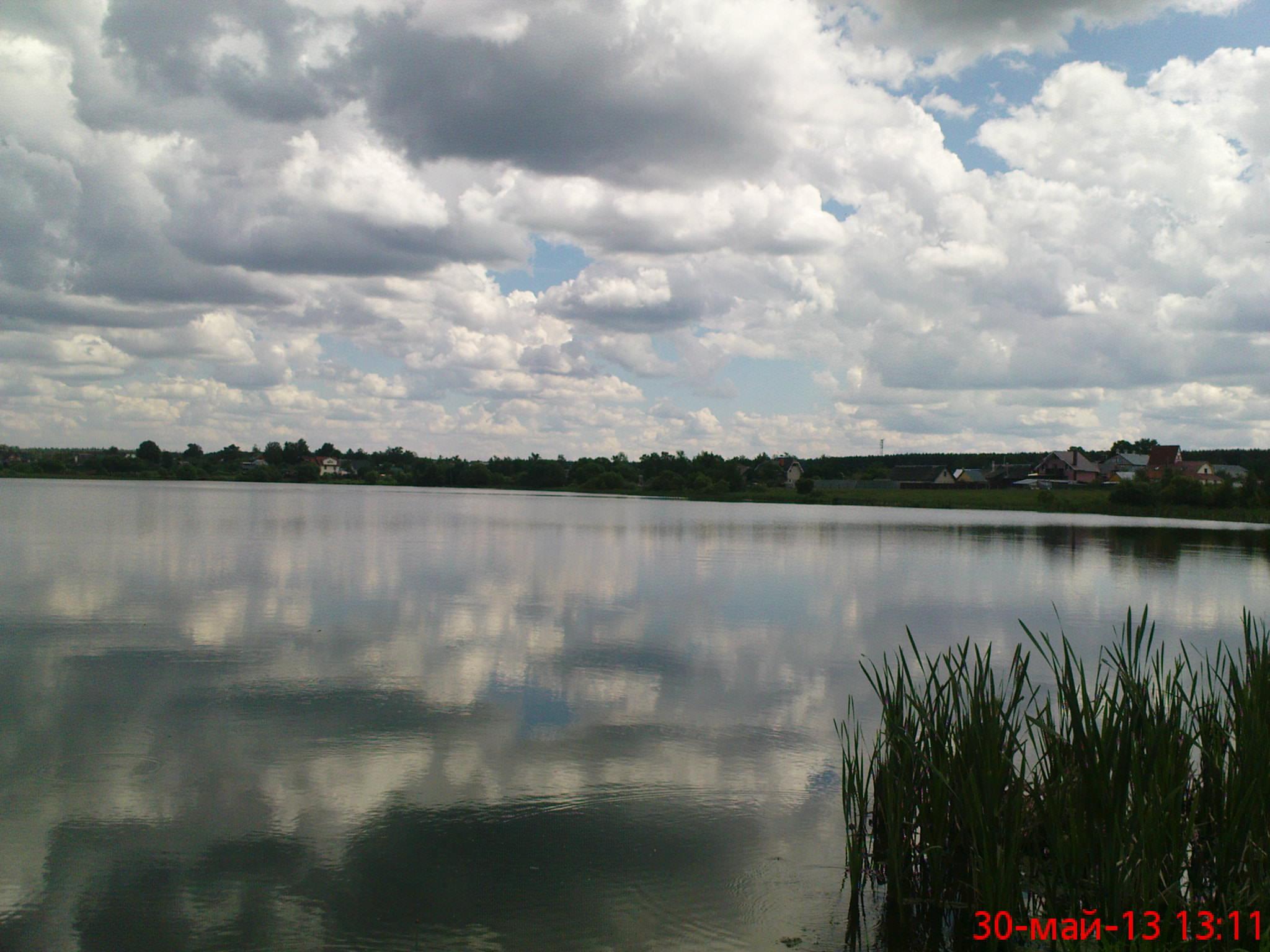 портновские пруды рыбалка форум